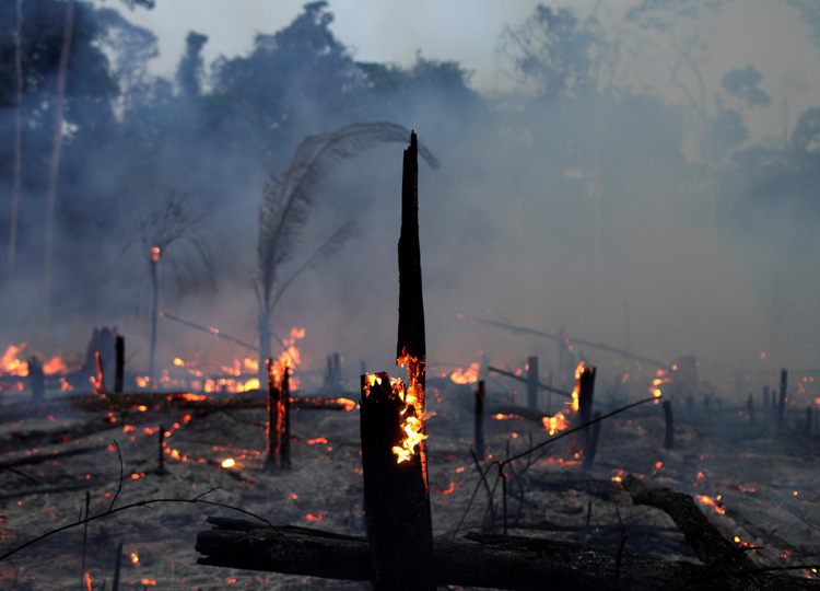 A fire burns a tract of Amazon jungle as it is cleared by a farmer in Machadinho d'Oeste, a municipality in Brazil's Rondonia state, on Sept. 2.