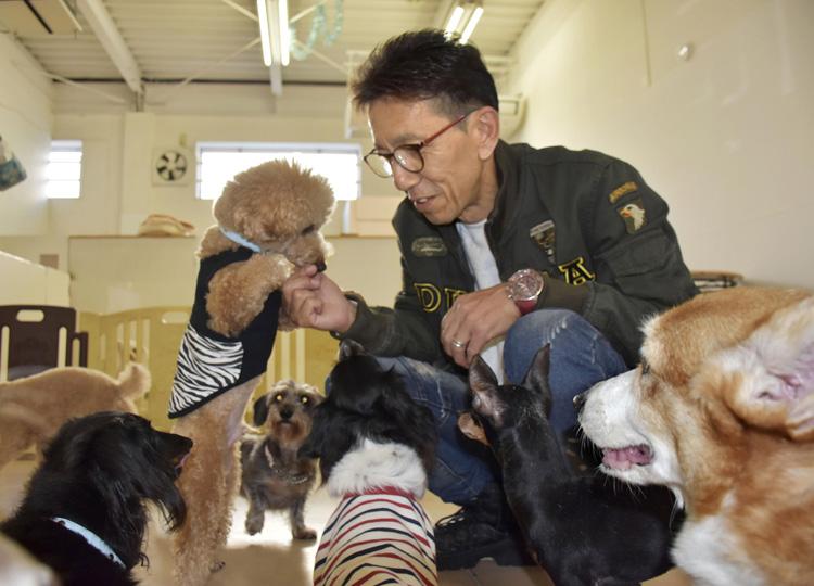 犬を飼いたいシニア世代に保護犬を NGOの新しい取り組み