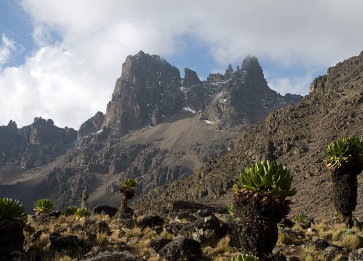 Mount Kenya National Park (Kenya)